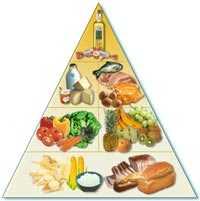 alimentos-solidos.jpg
