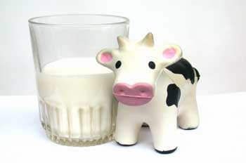 leche-vaca-bebe