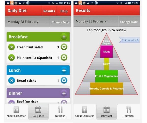 Esta completa herramienta contiene los valores nutricionales ideales para una embarazada y los compara con tus hábitos alimenticios